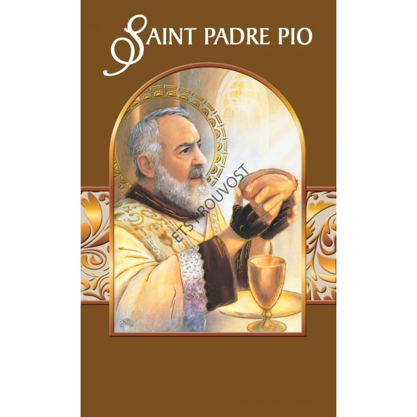 LOT DE 12  CARTES DOUBLES BIBLIO PADRE PIO